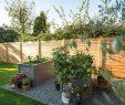 Garten Sichtschutz Das Beste Von Sichtschutz Für Den Garten Infos Und Ratgeber
