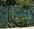 """Garten Sichtschutz Schön Garten Sichtschutz Coventry """"classic"""" Grün 185 X 125cm"""