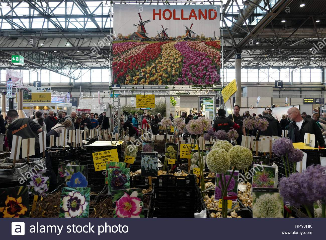 leipzig germany 23rd feb 2019 flower bulbs from holland are offered for sale at the haus garten freizeit trade fair at the leipziger messe parallel to the haus garten freizeit the fair mitteldeutsche handwerksmesse 2019 takes place from 2302 credit peter endigdpaalamy live news image