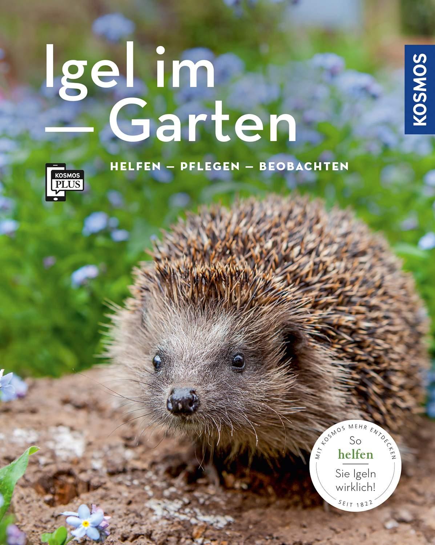 Igel Im Garten Das Beste Von Igel Im Garten Mein Garten