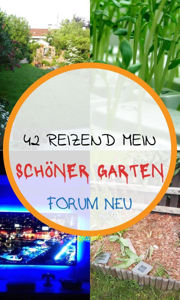 Mein Schöner Garten forum Elegant Gestaltung Kleines Blumenbeet Mein Schöner Garten forum
