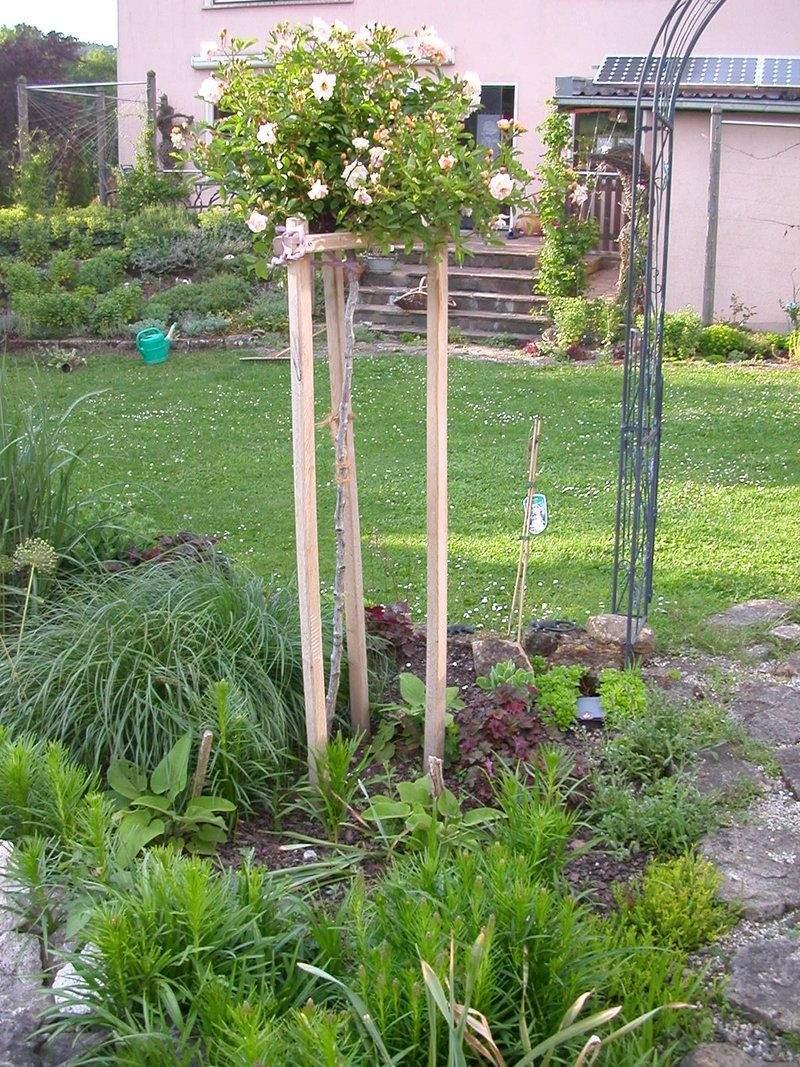 Mein Schöner Garten forum Elegant Ghislaine De Féligonde Kaskade Dreibein