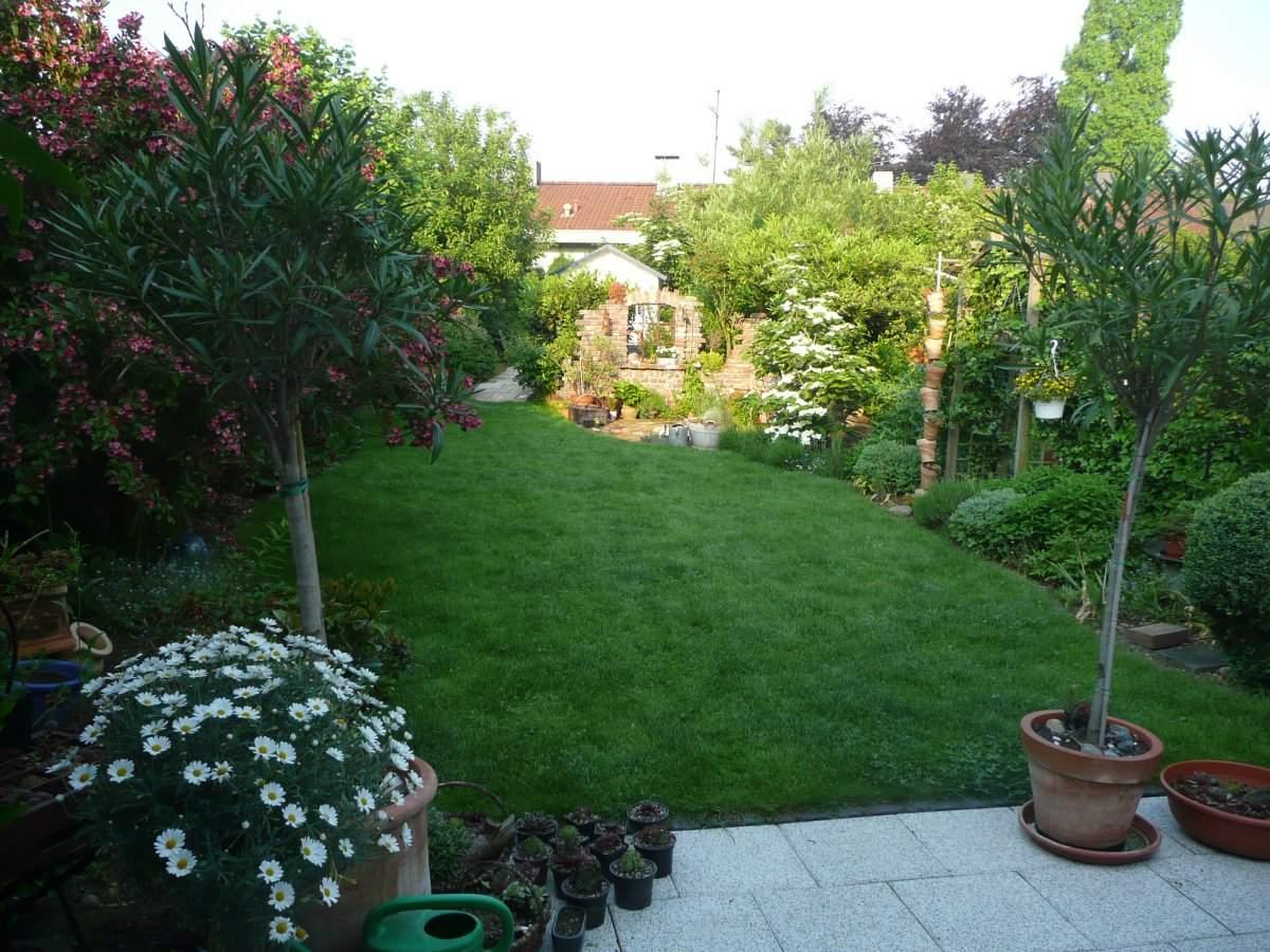 Mein Schöner Garten forum Neu Gartenforum Zeigt Her Eure Gärten Seite 8