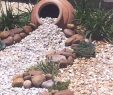 Pinterest Garten Neu Loved Using Ideas From Pinterest In Our New Low Maintenance