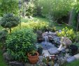 Pinterest Garten Reizend Small Water Garden Gardens Pinterest Picture to Pin On Pinte