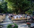 Prater Garten Berlin Neu Best Beer Gardens to Visit In Berlin