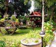 """Schöne Gärten Das Beste Von Bild """"schöne Gärten"""" Zu Pattaya In Pattaya"""