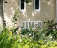 Schöne Gärten Das Beste Von In 7 Schritten Zum Traumgarten Das Geheimnis Schöner