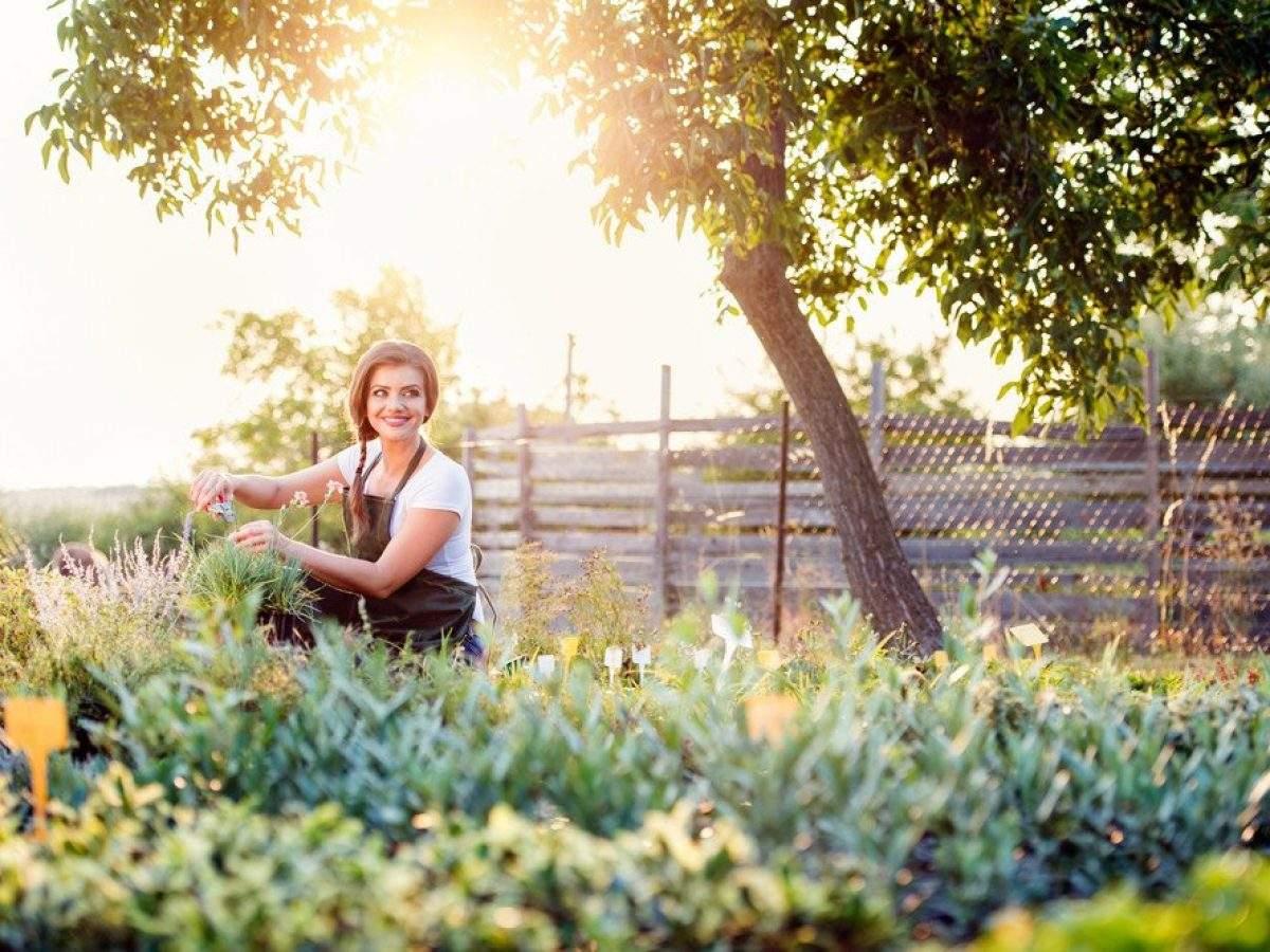 Schöne Gärten Gartenarbeit Entspannung Frau 1200x900