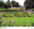 Schöne Gärten Inspirierend Schöne Gärten Stockfoto Bild Von Yard Gefärbt