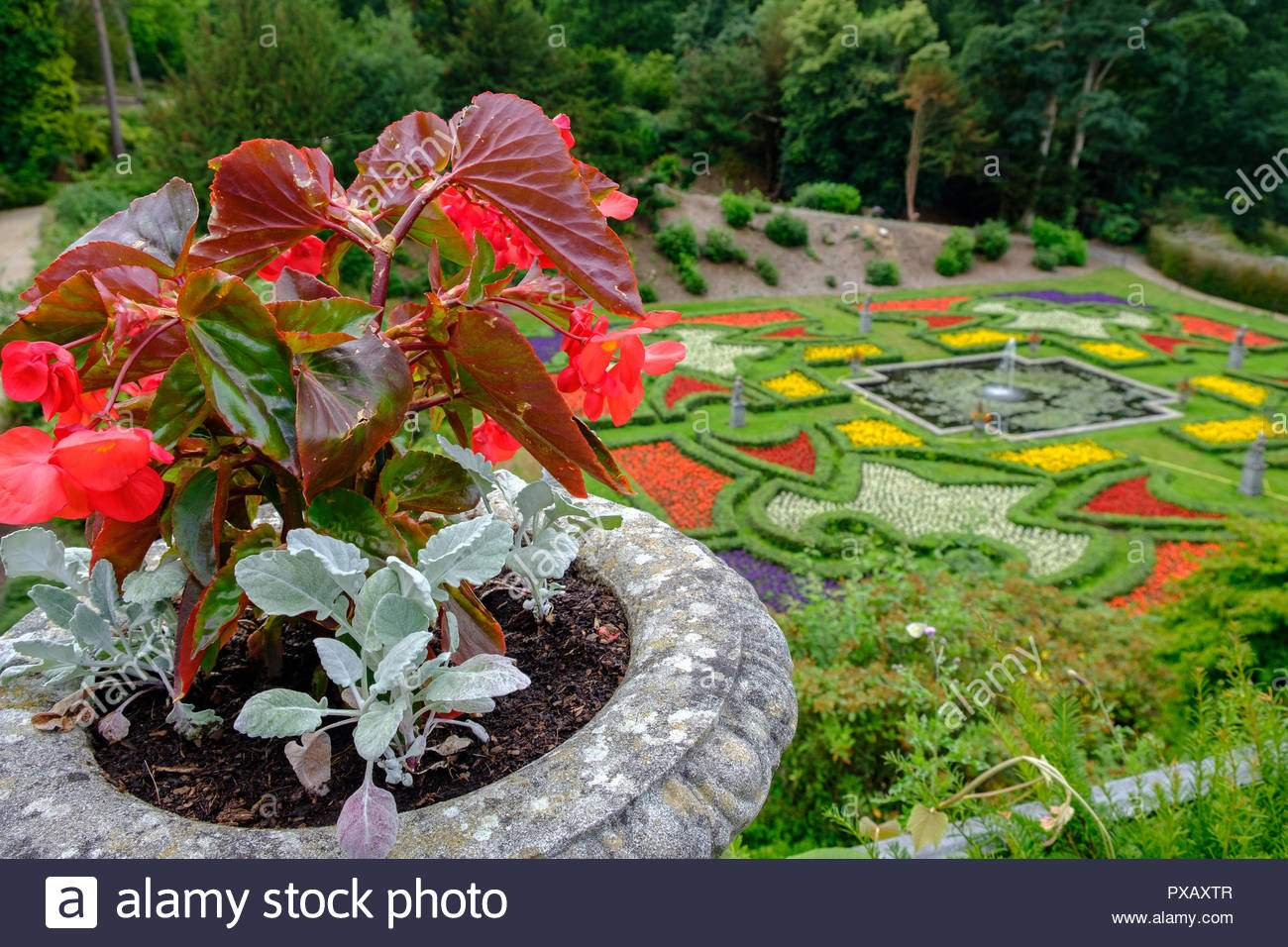 blumentopf und schone garten in lyme hall herrenhaus in peak district cheshire grossbritannien pxaxtr