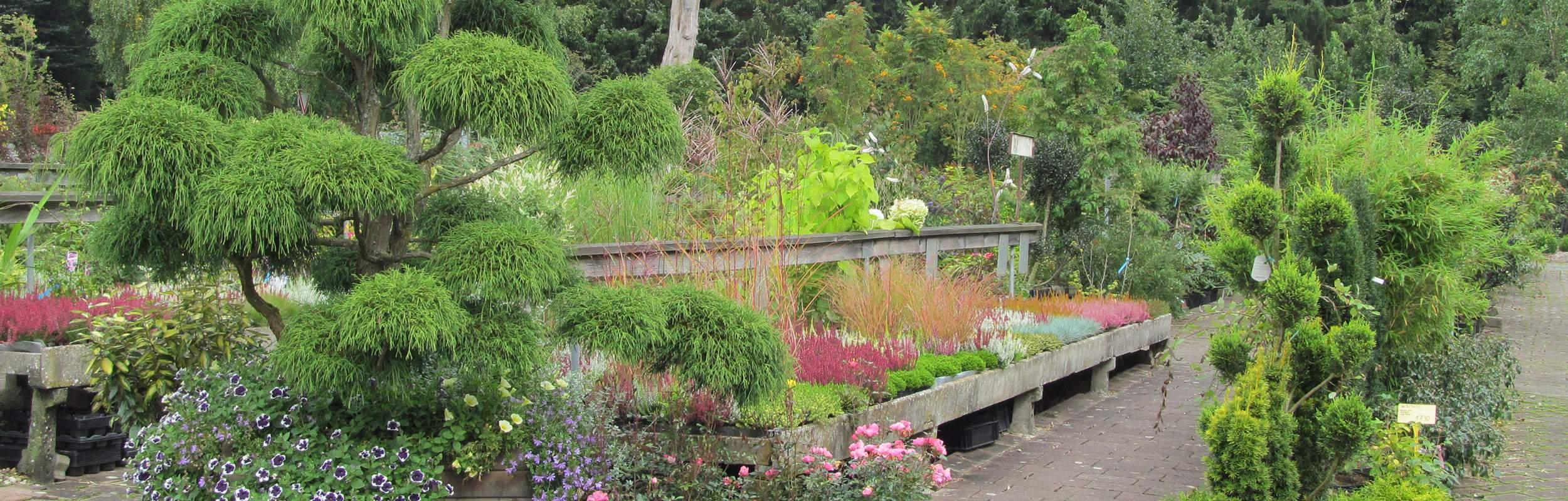 Schöne Gärten Neu Garten Landschaft Baumschule Meschede