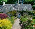 Schöne Gärten Neu Gärten