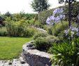 Schöne Gärten Schön Naturnahe Gartengestaltung Mit Naturpool – Lauterwasser