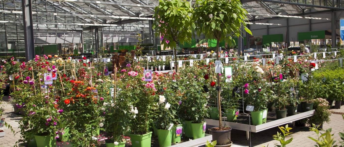 Schöner Garten Das Beste Von Kremer