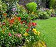 Schöner Garten Luxus Stock
