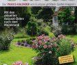 Schöner Garten Reizend Kalender Mein Sch–ner Garten 1 2019 Zeitungen Und