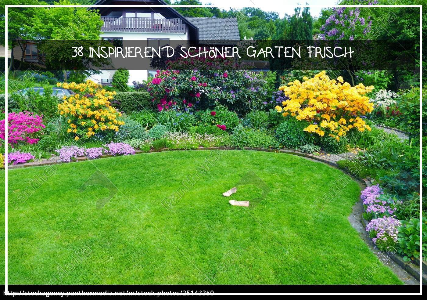 Schöner Garten Reizend Stock Bild Schöner Garten
