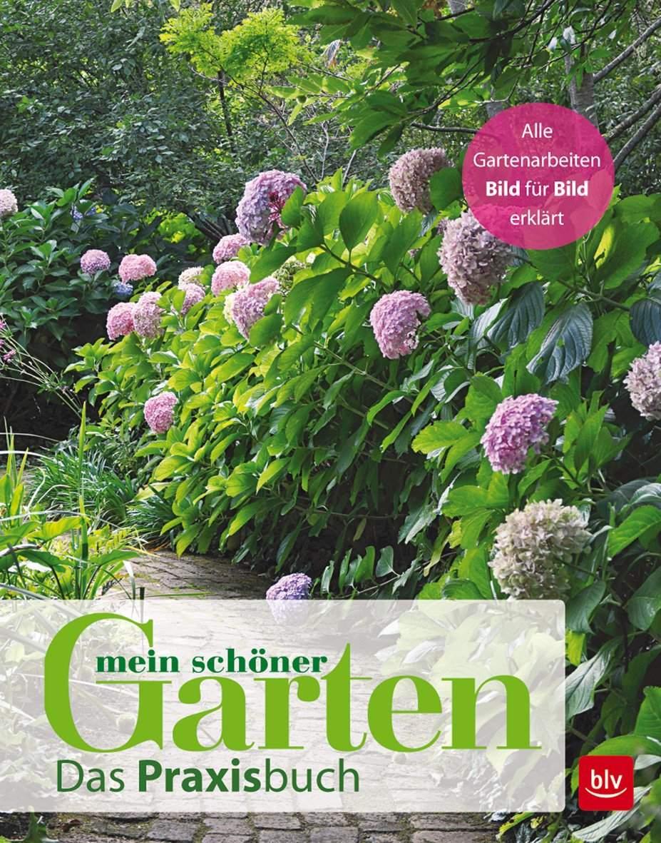 Schöner Garten Schön Mein Schöner Garten