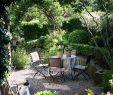 """Schweizer Garten Neu Ein Schweizer Garten On Instagram """"der Seniorkater Auf Der"""
