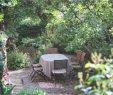 """Schweizer Garten Neu Ein Schweizer Garten On Instagram """"der Senkgarten Bei Der"""