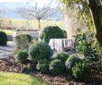 """Schweizer Garten Reizend Ein Schweizer Garten On Instagram """"sieht Aus Wie Buchs ist"""