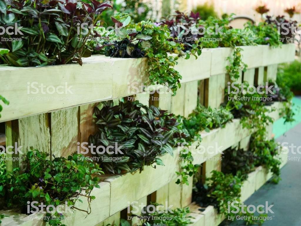 Vertikaler Garten Das Beste Von Vertikaler Garten Stockfoto Und Mehr Bilder Von Architektonisches Detail