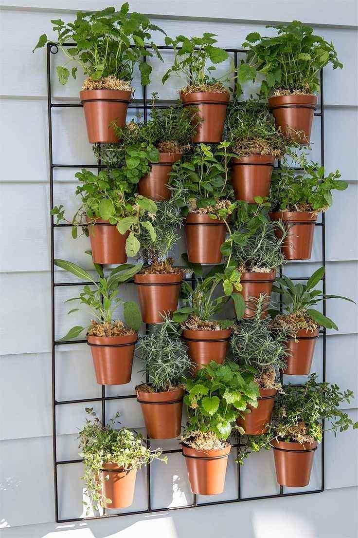 Vertikaler Garten Einzigartig Kräuter Auf Dem Balkon Pflanzen – Wie Legt Man Einen