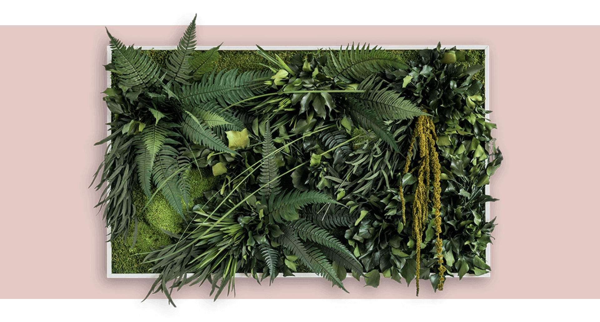 Vertikaler Garten Einzigartig Vertikaler Garten Pflanzen Für Ihr Unternehmen Laroosa