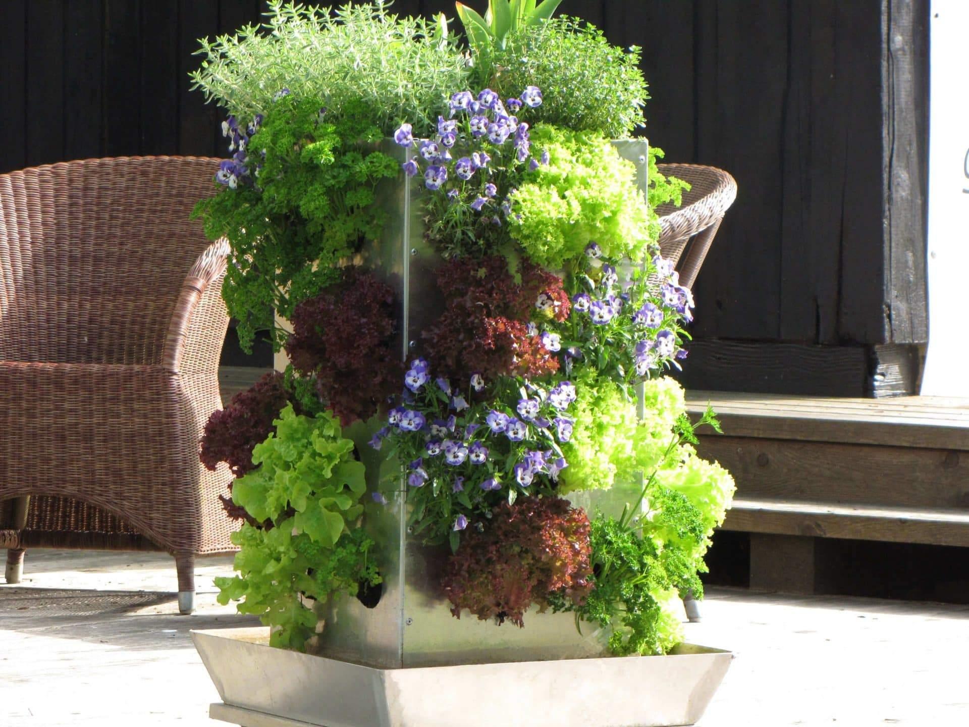 Vertikaler Garten auf Terrasse