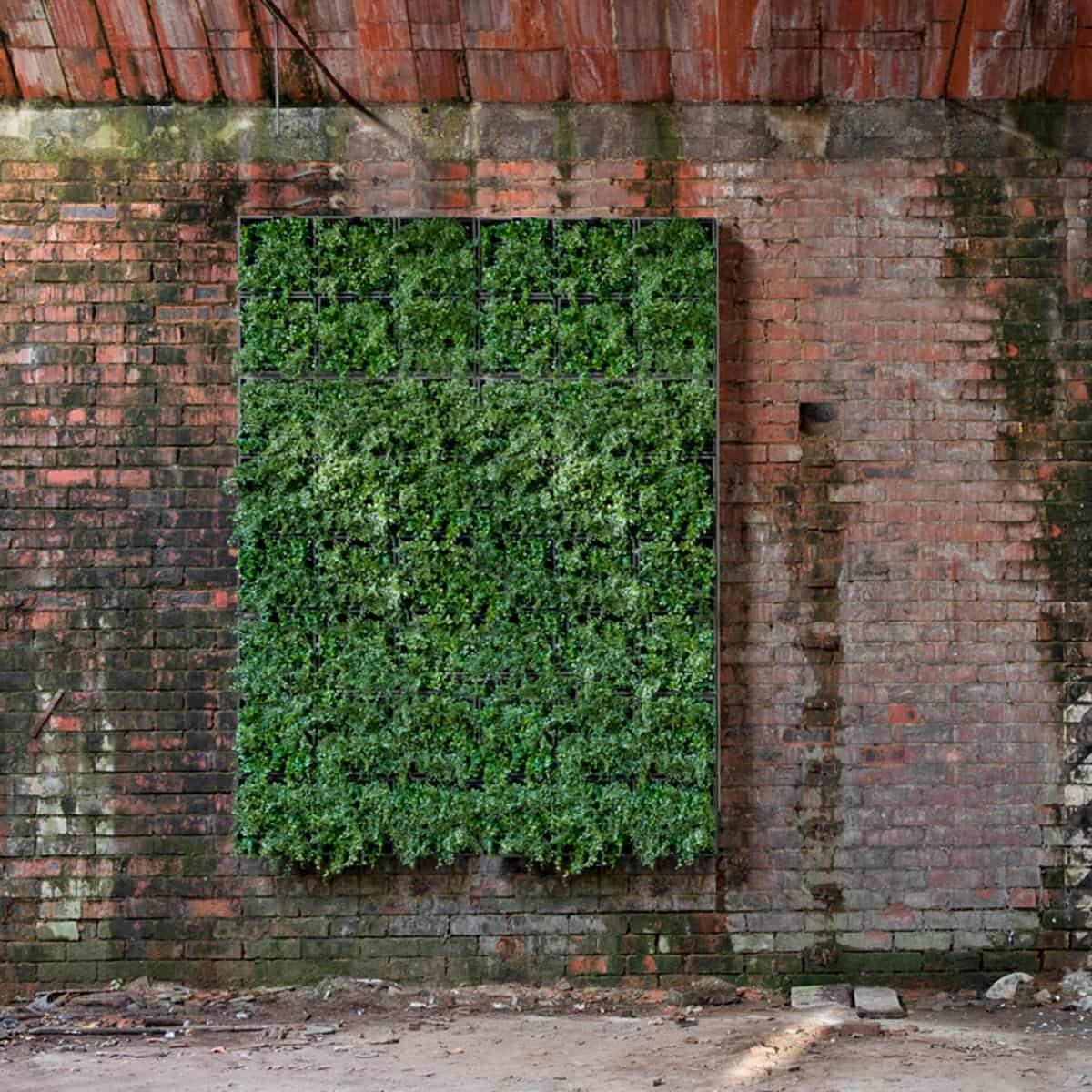Vertikaler Garten Bild 1