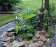 Wasserpumpe Garten Elegant Easy to Do Fountain with Recycled Tea Pot and Water Pump