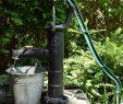 Wasserpumpe Garten Elegant Gartenpumpe Test 2020