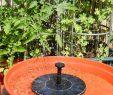 Wasserpumpe Garten Frisch Us $12 19 Off 200l H Schwimm solarbrunnen Panel Kit Garten Wasserpumpe Für Vogeltränke Pool Bewässerung Breite Bewässerung Pumpen 7 V 1 4 Watt In
