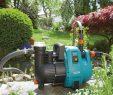 Wasserpumpe Garten Luxus Druckschalter Gartenpumpe Test Testsieger