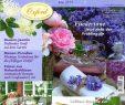 Wohnen Und Garten Das Beste Von Wohnen Und Garten Haus & Garten Zeitschriften Online