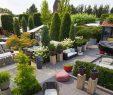 Wohnen Und Garten Luxus Garten Wohnen Hpslide 046 – Garten & Wohnen