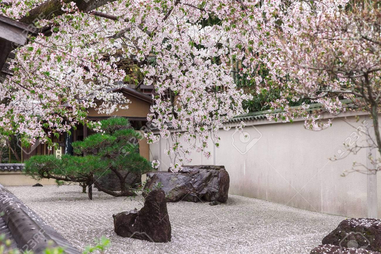 photo zen garten im japanischen stil dekoriert mit rosa kirschblüten im frühjahr arashiyama kyoto japan