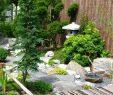 Zen Garten Inspirierend Zen Garten