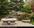 Zen Garten Reizend Lizenzfreies Bild Zen Garten
