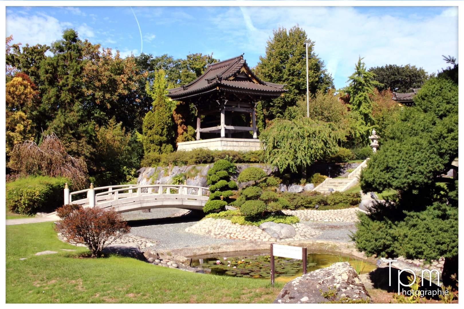 Zen Garten Reizend Zen Garten In Düsseldorf Foto & Bild