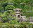 Zen Garten Schön Japanischer Zengarten Mit Bonsai Und Traditionelle Steinlaterne Stockfoto Und Mehr Bilder Von Architektur