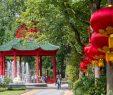 Zoologischer Garten Berlin Elegant Zoo Berlin Panda Garden Wird Eröffnet