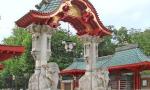 33 Elegant Zoologischer Garten Berlin Luxus
