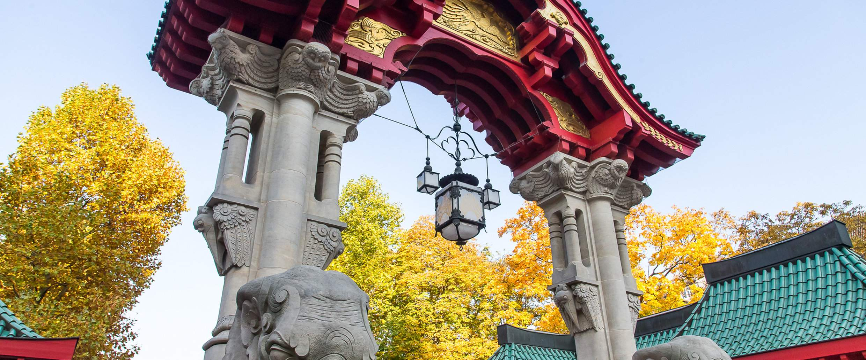 Elefantentor im Herbst Zoo Berlin DL PPT 0