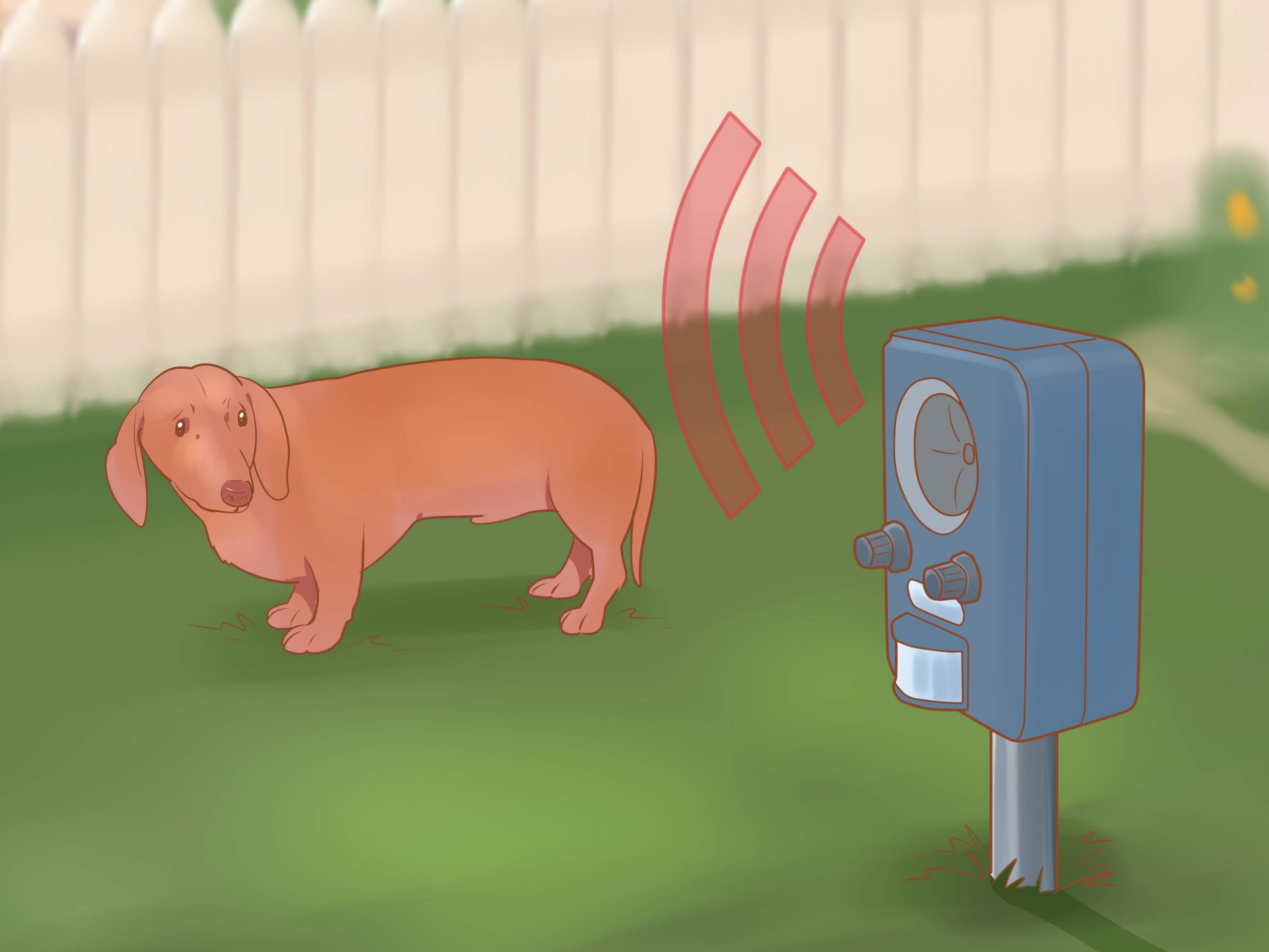 Keep Dogs off Lawn Step 13 Version 3