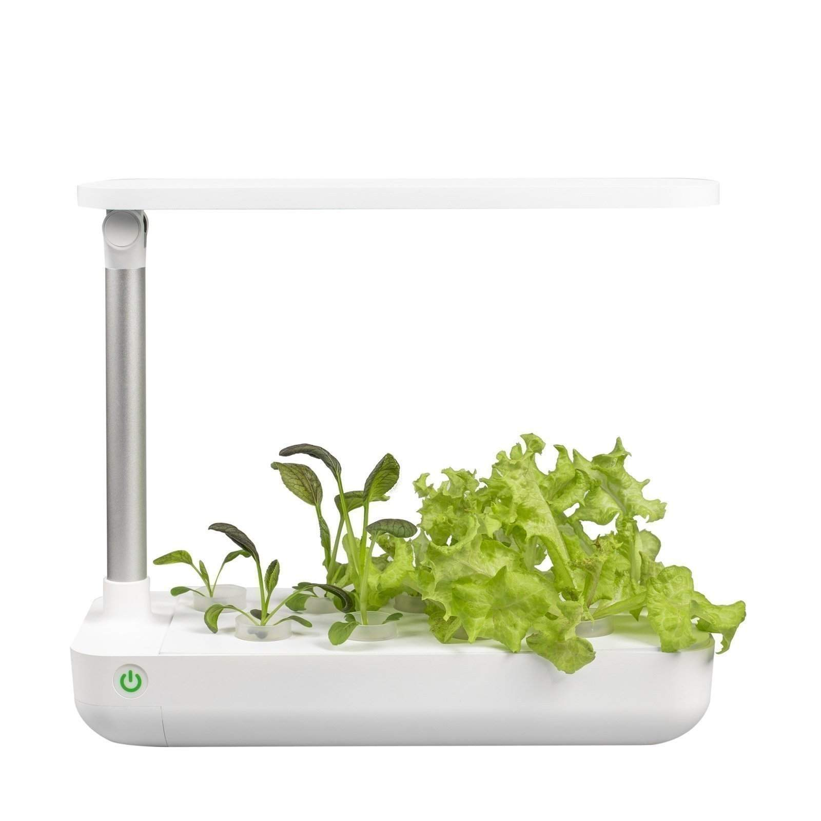 vegebox table greens front 1600x1600